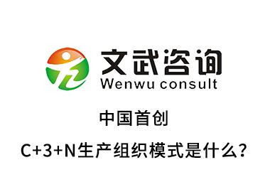 中國首創的C+3+N生產組織模式是什么?